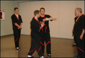 WingTsun seminar in Chicago - photo